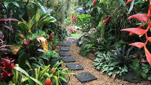 Small Picture Create A Tropical Garden In Your Home The Plant Guide pool and