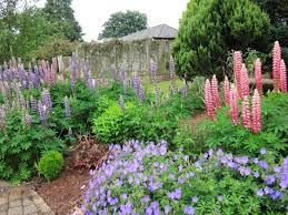 Irish National Stud & Gardens: Lovely gardens