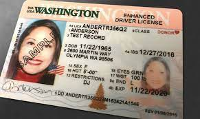 how to renew your wa license