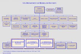 Ice Organizational Chart 2019