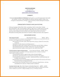 Examples Of Resume Summary For Customer Service Sample Professional Summary for Customer Service Resume Danayaus 36
