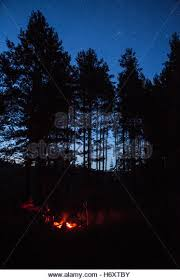 camping in the woods at night. A Campfire In Forest At Night - Stock Image Camping The Woods O