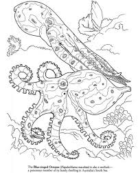 Printable realistic unicorn coloring pages for preschoolers. Advanced Realistic Coloring Pages Of Octopus For Adults Free Printable Letscolorit Com Octopus Coloring Page Animal Coloring Pages Dover Coloring Pages