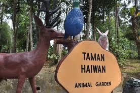 animal garden. Loading Image. Please Wait. Animal Garden