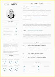 Cv Template Layout Word Cv Templates Free Professional Designs In