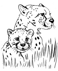 Baby Cheetah Coloring Pages With Mom Coloringstar Coloring Home