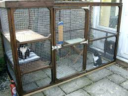 outdoor cat enclosure ideas enclosures for run on and cats interior decorating