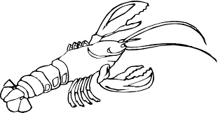 Small Picture Printable Lobster Coloring Pages Kids Colouring Pages Coloring