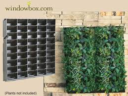 innovative living wall diy vertical garden 1000 ideas about living wall planter on garden wall