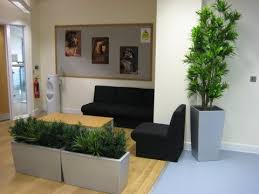 office plant displays. Simple Office With Office Plant Displays E