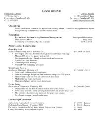 Writing Career Objectives For Resume How To Write A Good Objective