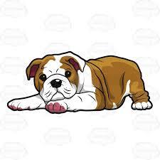 cute bulldog clipart. Exellent Bulldog Concept Design Home Cute Bulldog Clipart Pictures To Pinterest