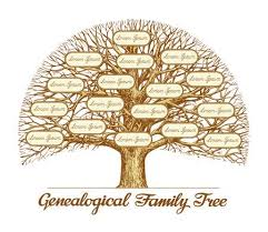 Family Tree Stock Photos And Images 123rf