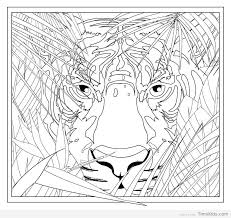 Coloring Pages For Teen Boys Timykids