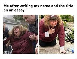 fresh memes today after writing my and the essay title  essay title writing funny memes