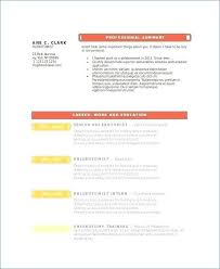 Download Chief Police Resume Examples Examples Of Resumes U40 Www Custom Shidduch Resume