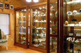 These display cabinets in Mike Walters' showroom show off the specimens  perfectly.