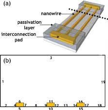 a schematic diagram of three nanowire electrodes in array b 2d a schematic diagram of three nanowire electrodes in array b 2d representation of three nanowire electrodes in array used for simulation of di ff usion