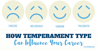 Career Test Free Interesting How Temperament Type Can Influence Your Career