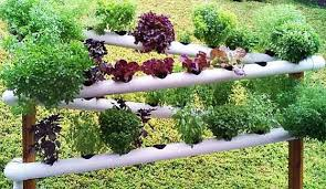 how to build a hydroponic garden. diy pvc gardening ideas and projects - hydroponic garden tower how to build a