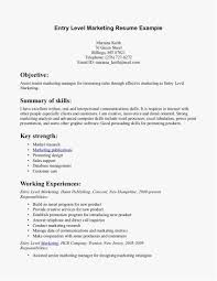 Entry Level Marketing Resume Templates Entry Level Marketing Resume