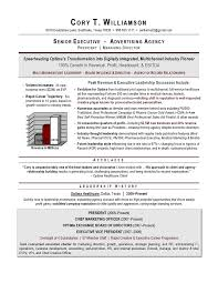 Leadership Resume Examples Custom Executive Resume Samples From Top US AwardWinning Executive Resume