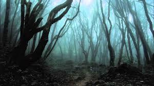Image result for deep dark