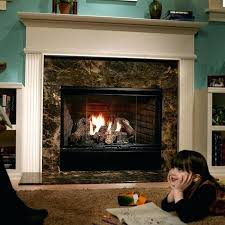 heatilator fireplace fireplace and hearth heatilator fireplace screen doors