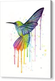 colorful bird canvas print hummingbird of watercolor rainbow by olga shvartsur on colorful birds canvas wall art with colorful bird canvas prints fine art america