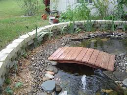 gallery for outdoor turtle pond ideas