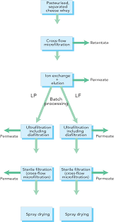 Whey Processing Flow Chart Whey Processing Dairy Processing Handbook