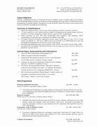 13 Unique Software Programmer Resume Sample Resume Sample