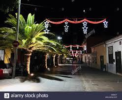 Christmas Lights Santa Cruz Christmas Lights And Palm Trees In Santa Cruz De Tenerife