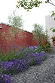 Small Picture Garden Design With Mediterranean Plants The Solaris Wellness Uamp