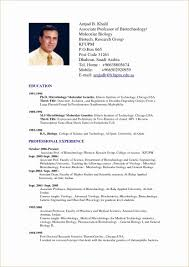 American Resume Format Awesome Resume Format American Style Luxury American Resume Format Resume
