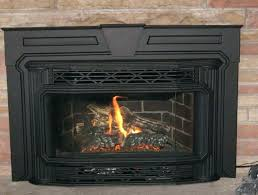 gas fireplace inserts edmonton regency fireplace parts products home design ideas napoleon gas fireplace inserts gas fireplace inserts edmonton
