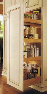 Roll Out Pantry Cabinet Startling Pantry Closet Pull Out Shelves Roselawnlutheran