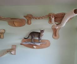 wall mounted cat furniture. Unique Mounted Cat Wall Furniture To Wall Mounted Cat Furniture L