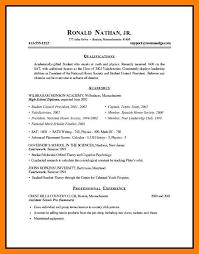 9 Sample Resume Formats By Nina Designs