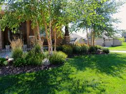front garden bed with trees