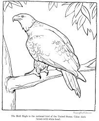 Small Picture Free Bald Eagle Coloring Pages Coloring Home