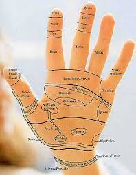 Reflexology Pressure Points Chart Reflexology Charts Hand Foot Ear Reflexology Chart Tips