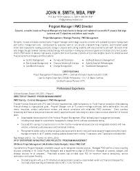 Resume Summary Examples Examples Of Resume Summary Sample Statement