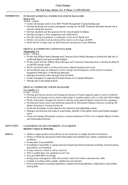 Excellent Digital Asset Manager Resume Gallery Example Resume