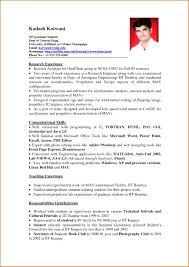 Examples Of Resumes Simple Resume Sample Format Job Pdf Simple