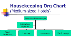 Organization Chart Of Housekeeping Department In A Small Hotel Organizational Chart Of Housekeeping Department In A Small