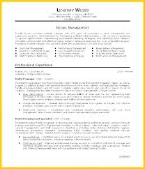 Summary Of Qualifications Resume Delectable Qualifications In A Resume Examples And Summary Of Qualifications