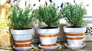 painting clay pots pot ideas how to paint a terracotta painted plant final hand painted clay flower pots