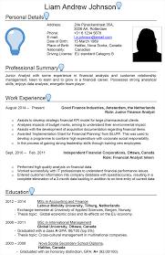 Netherlands Cv Sample Careerprofessor Works