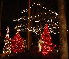 christmas lights outdoor trees warisan lighting. Christmas Light Ideas Outdoor Photo - 11 Lights Trees Warisan Lighting O